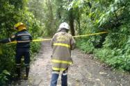 lluvias-ocasionaron-emergencias-por-caidas-de-arboles-y-deslizamientos.jpg