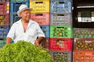 pequeños-productores-del-Tolima.png