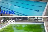 piscinagaviota1.jpg