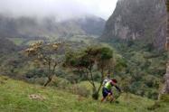 trail_running.jpeg