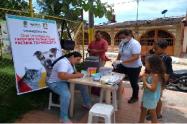 vacunacion-contra-la-rabia.png