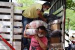 La entrega inicia en los municipios de Coello , El Espinal , Guamo  y Saldaña