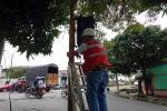 robo de clable semáforo Ibagué