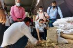 56 familias del conflicto armado beneficiadas en las ayudas