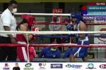 Liga boxeo Tolima
