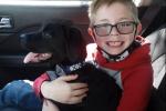Niño vende sus cartas Pokémon para salvar a su perro