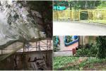 parque centenario en mal estado