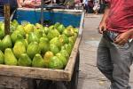 ¡Que liso! Vendedor de aguacates se robó un bolso con portátil de Metaima 2 en Ibagué