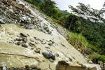 Ayudas en la zona rural de Ibagué