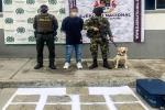 Pasajero capturado con 4 mil 600 dosis de marihuana